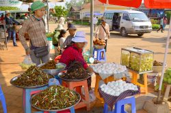 Kampong Thom Tonle Sap - Highlights of Cambodia