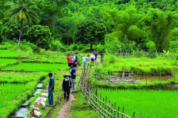 Trekking in Pu Luong - Vietnam active family tour