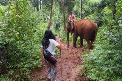 Sen Monorom in Cambodia - Trekking tour