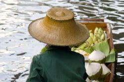 Damnoen Saduak Market in Bangkok - Highlights of Thailand tour