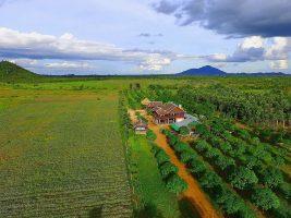 Homestay in Cambodia