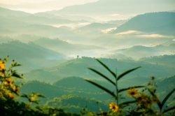 Mae Fah Luang botanical garden - Highlights of Thailand tour