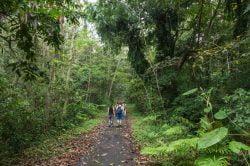 Explore Cat Ba National Park - Vietnam Nature Tour with Hanoi Voyages