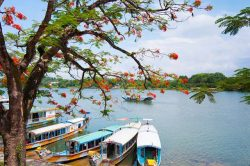 Cruising on Perfume River (Hue) - Vietnam Nature Tour with Hanoi Voyages
