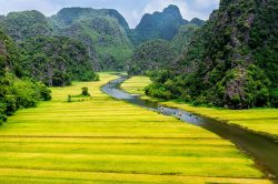 Breathtaking nature of Tam Coc - Essential Vietnam tour