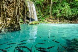 Erawan Waterfall in Kanchanaburi - Highlights of Thailand tour
