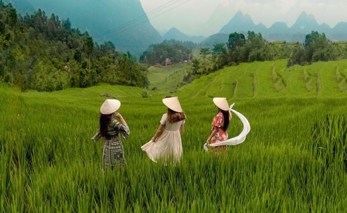 tours by locals rice field Pu Luong
