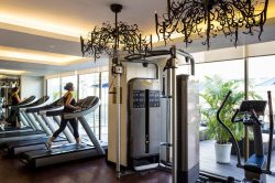 hotel de l opera hanoi fitness with a trainer