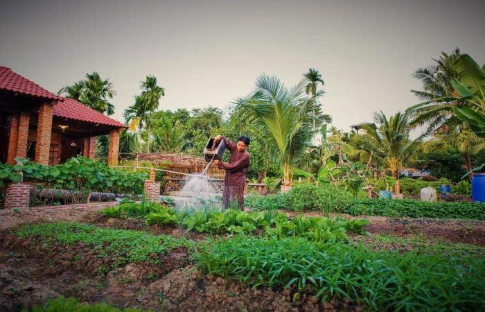 Mekong Rustic Garden